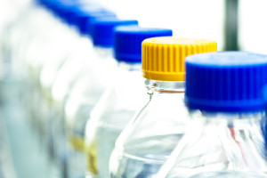 EU Deems BPA Safe to Humans - Good News or Is It?